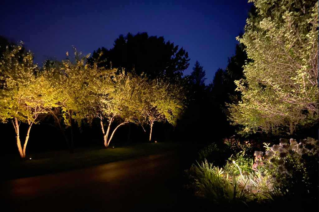 Twilight Solutions | Custom Lighting Design & Installation Company